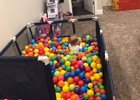 Our ball pit is always a blast